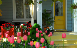 Color your Yard, Spring and Summer Flower recs to give your house a Facelift!